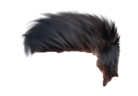 new cb hair png