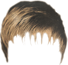 real hair png