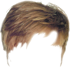 real hair png