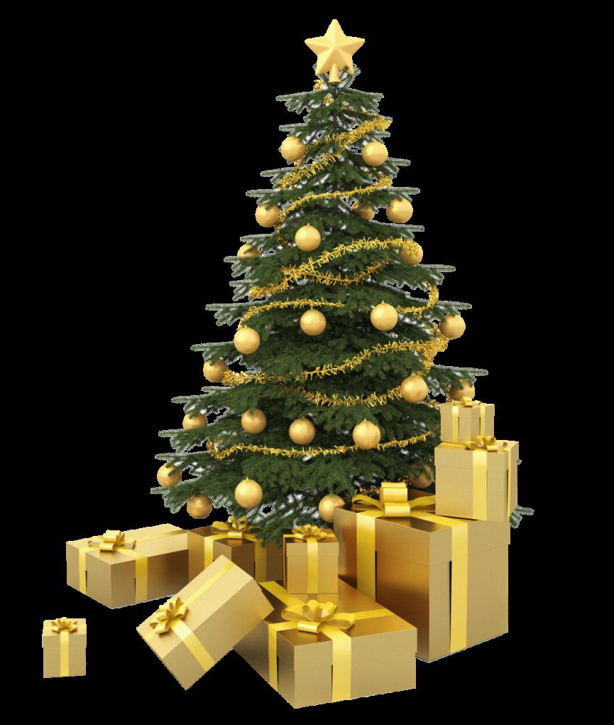 christmas_tree_PNG