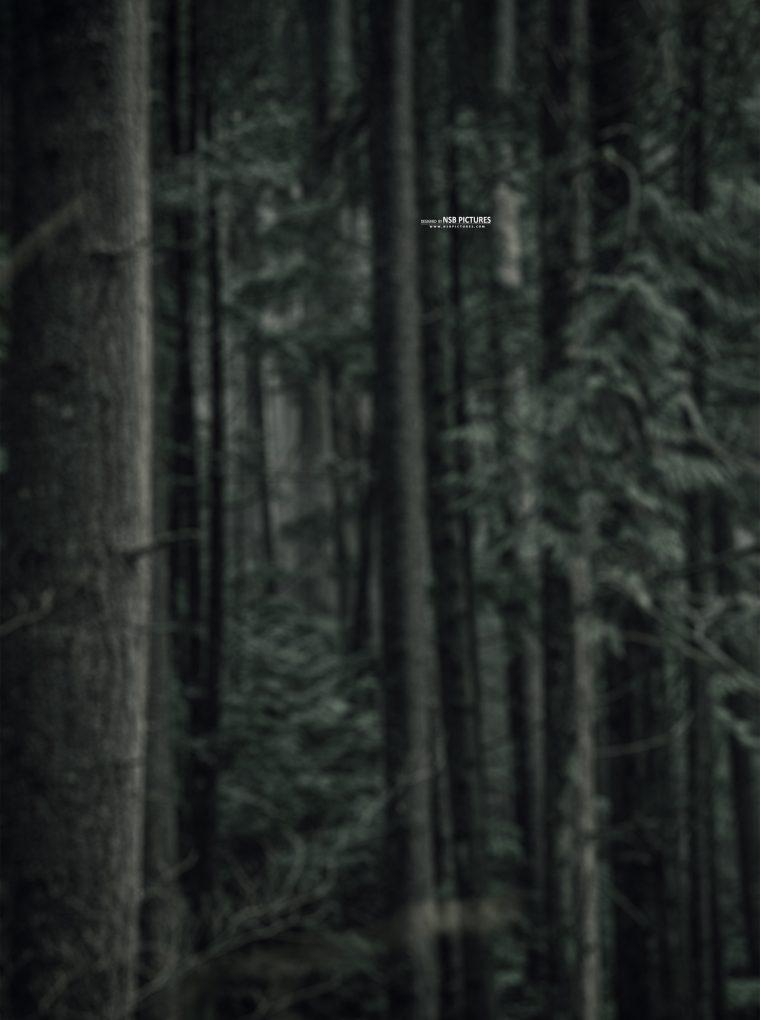 dark horror background