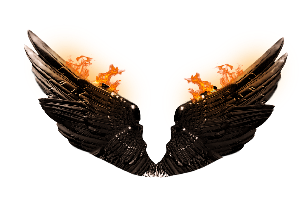 fire wings png