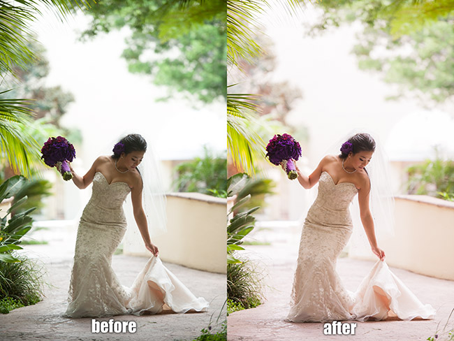 wedding camera raw presets