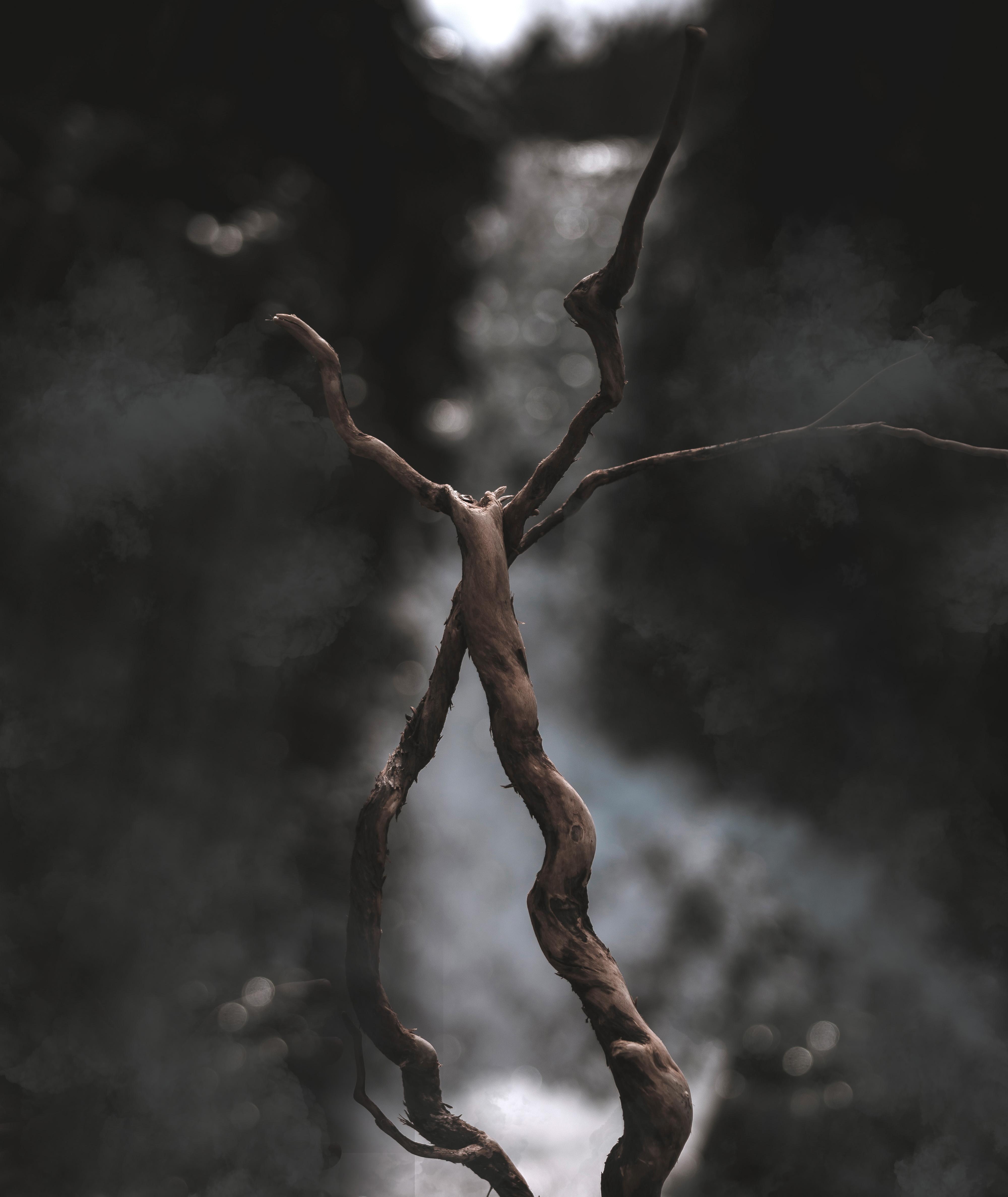 dark bookeh background