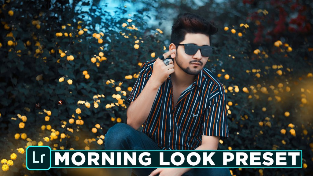 morning look lightroom preset download - Free lightroom ...
