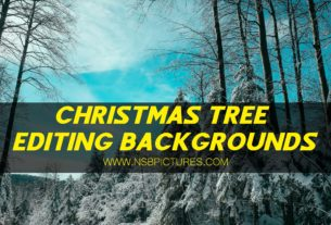 CHRISTMAS SPECIAL EDITING BACKGROUNDSCHRISTMAS SPECIAL EDITING BACKGROUNDS