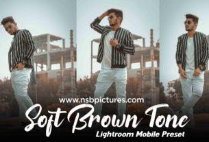 soft brown tone preset