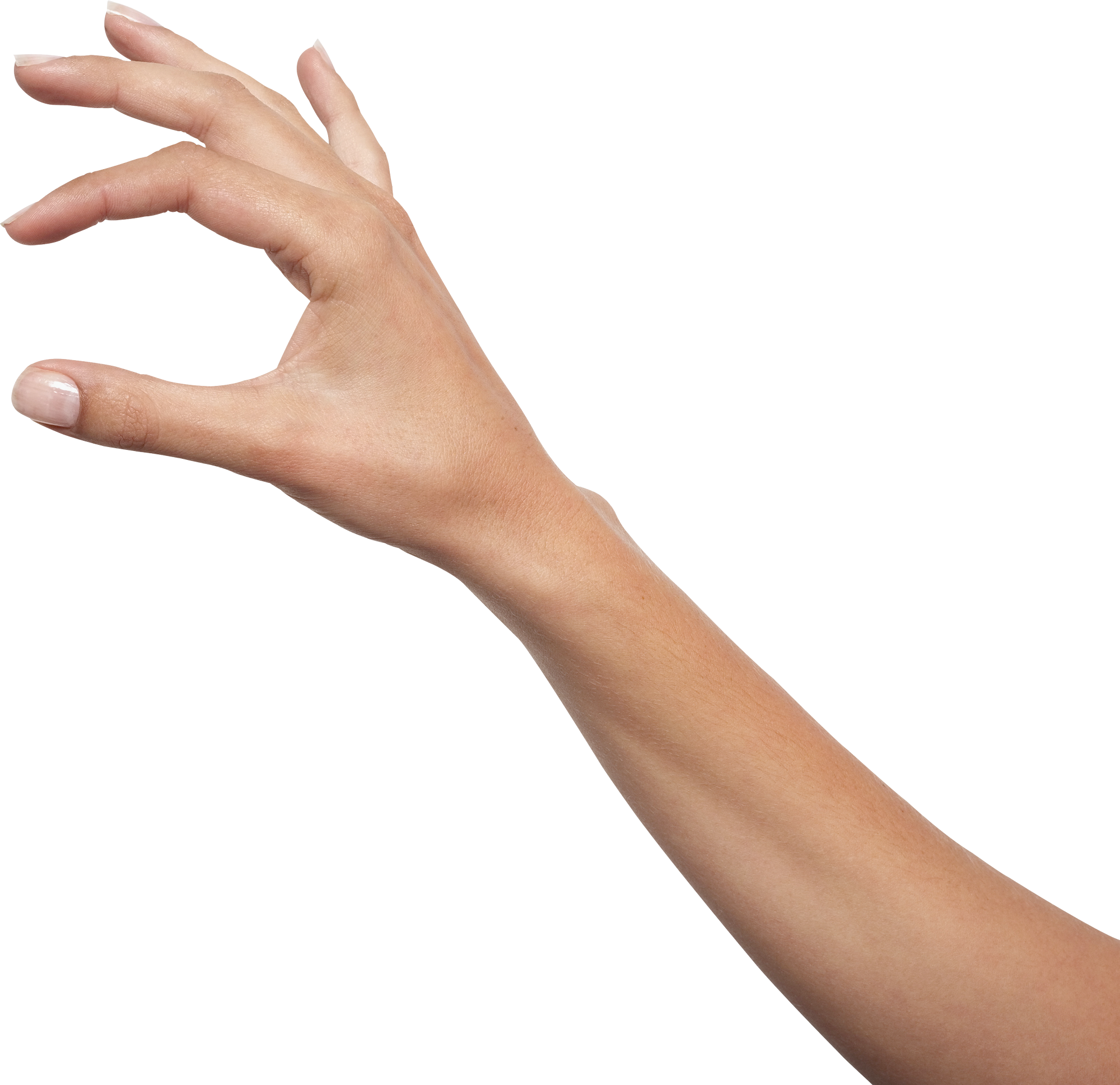 Hand png image transparent 13