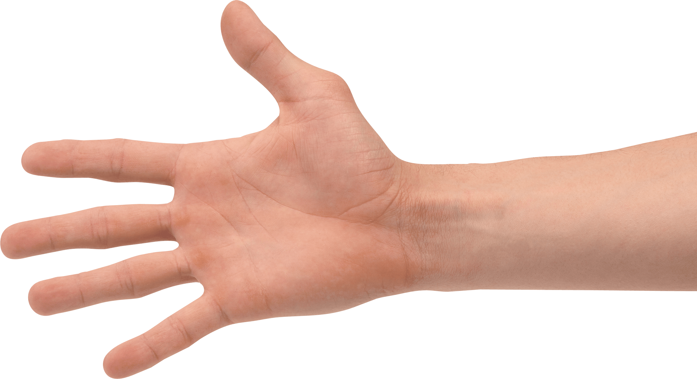 Hand png image transparent 5