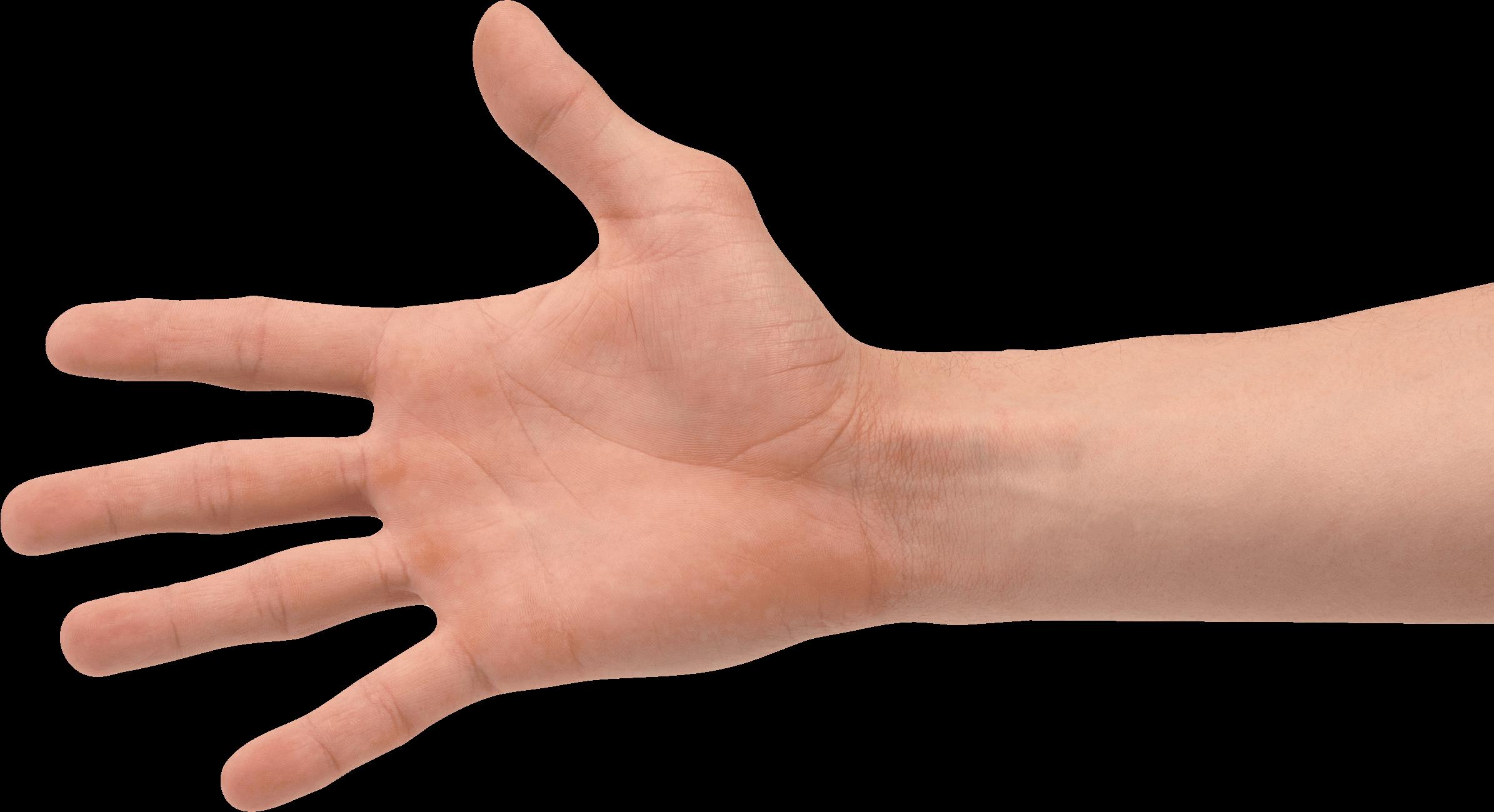 Hand png image transparent 5