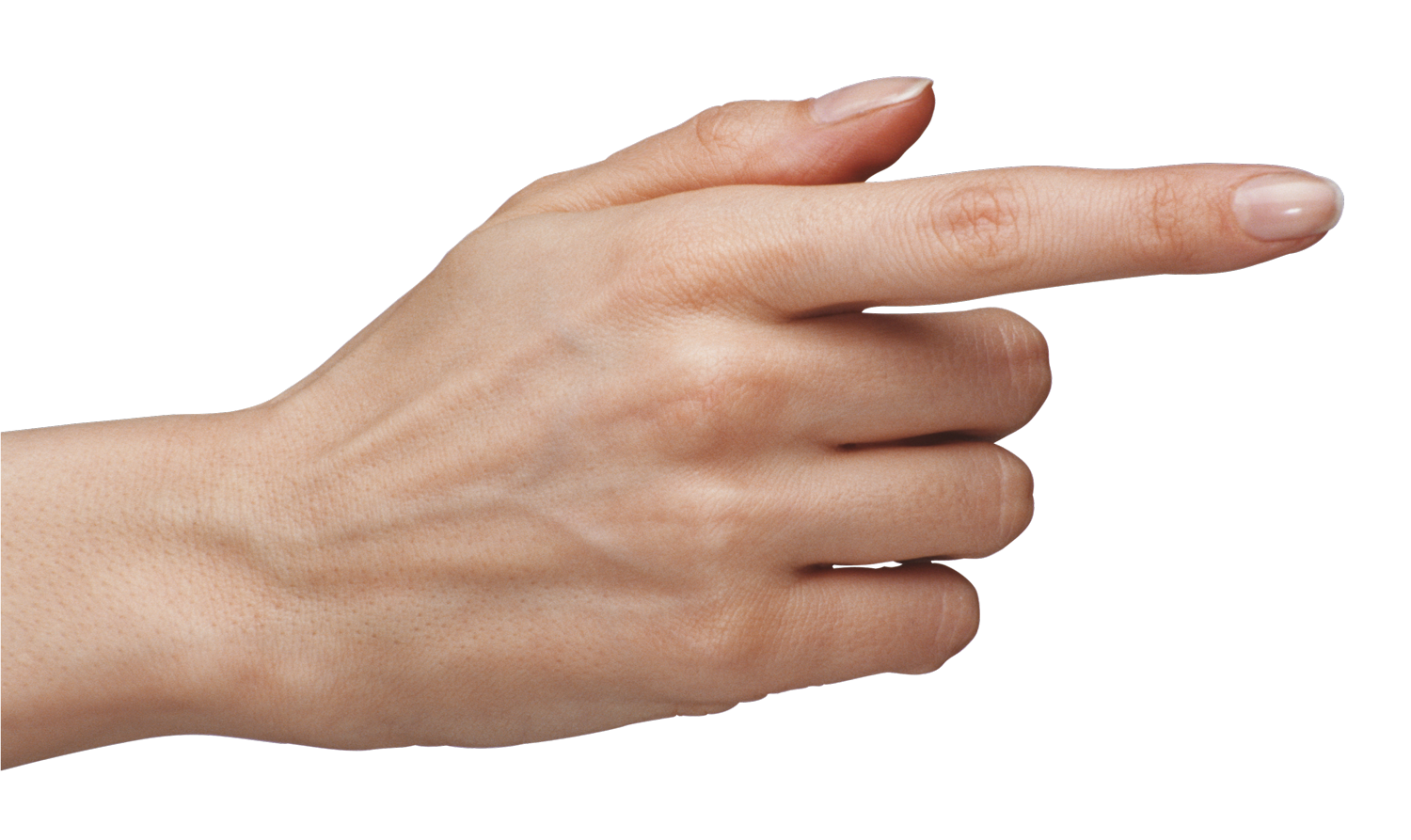 Hand png image transparent 9