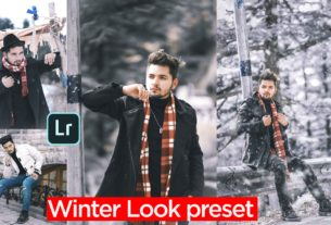 Winter tone Lightroom presets