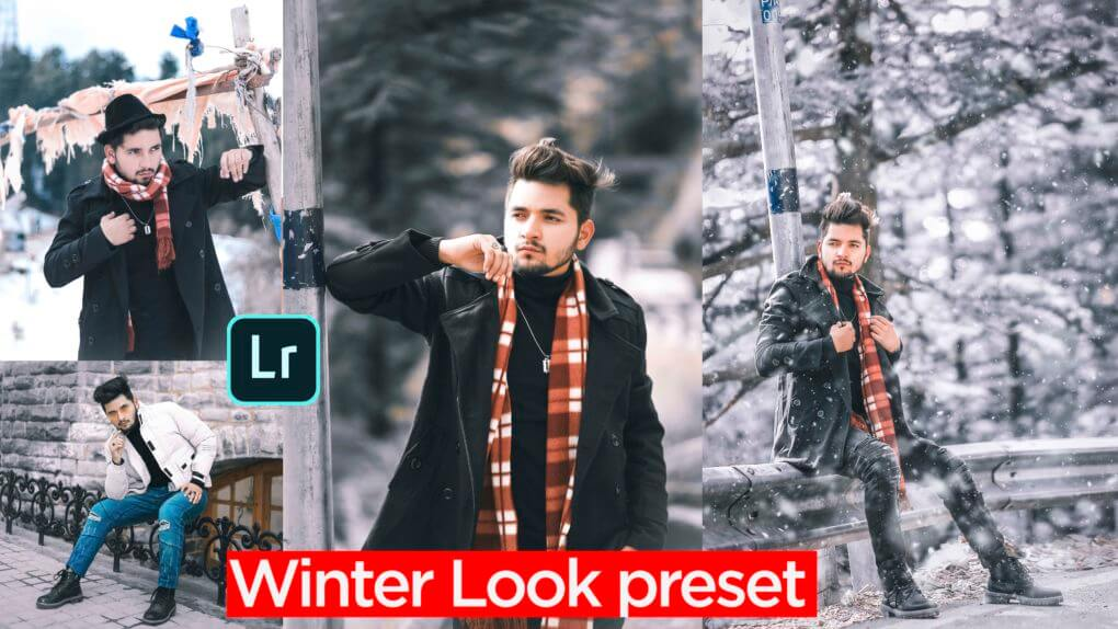 Winter tone Lightroom presets