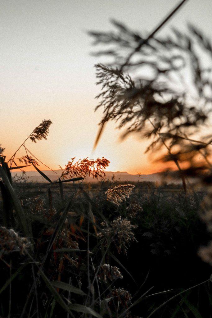 sunset hd background photos 14
