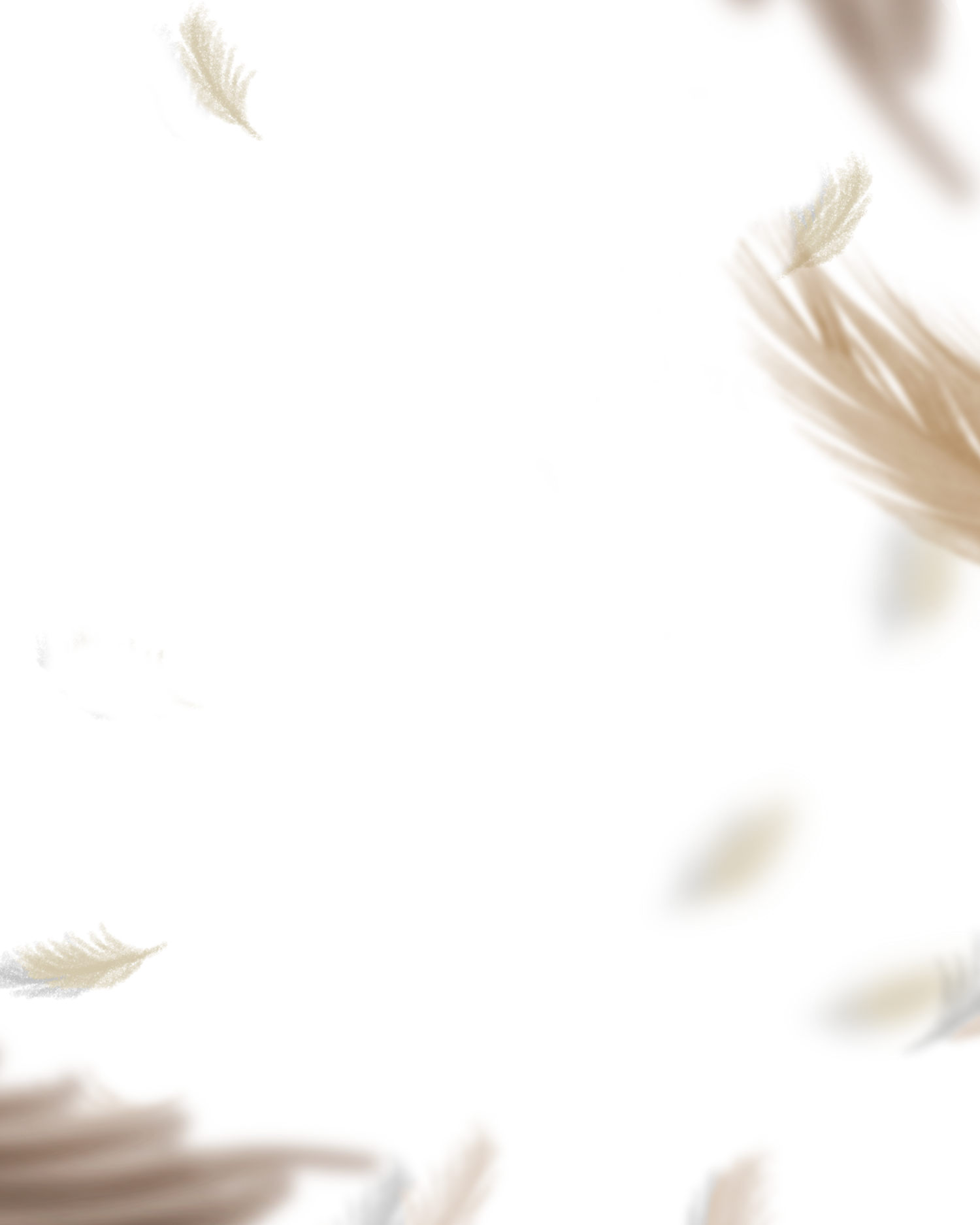 flying feather png