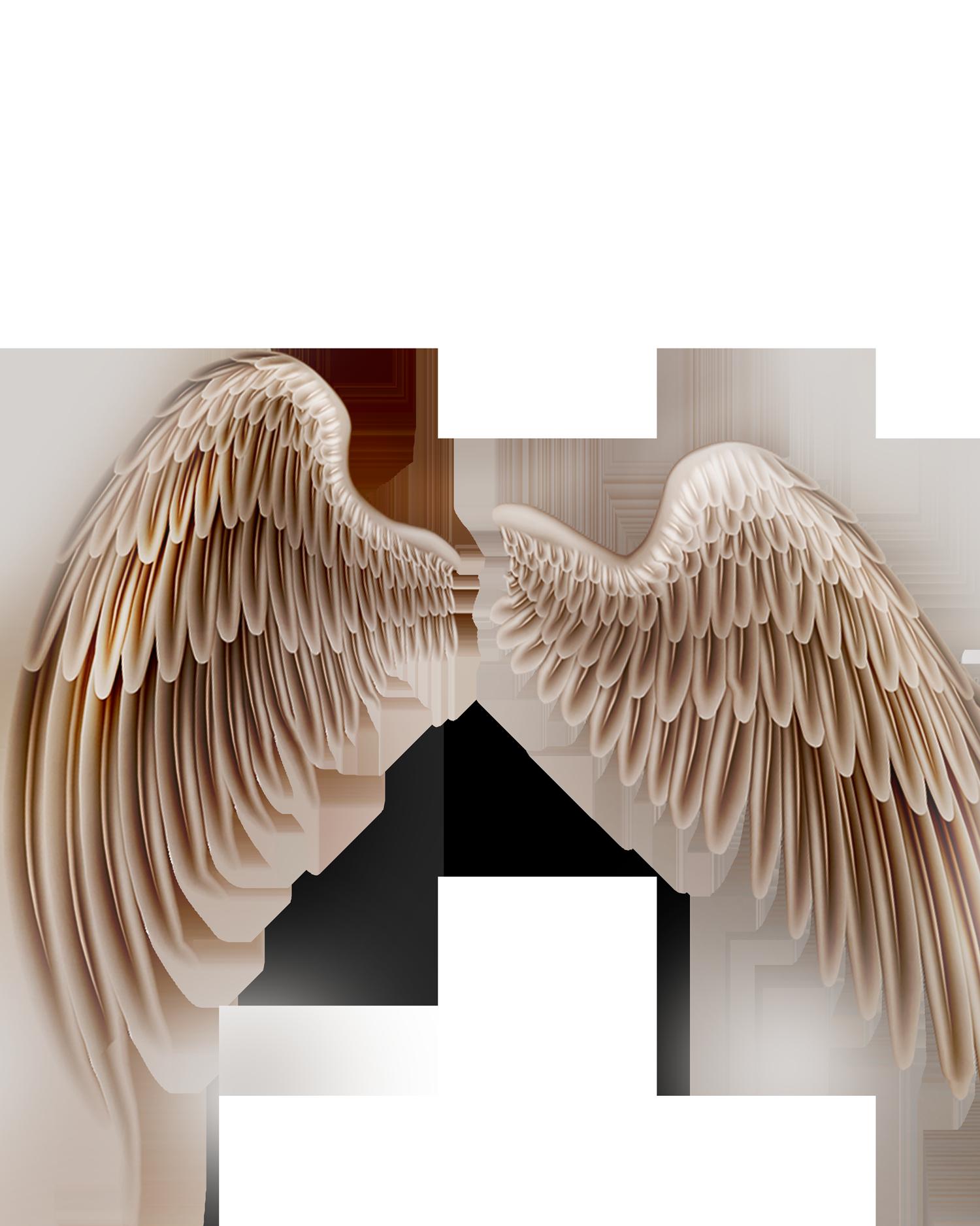 wings flying png